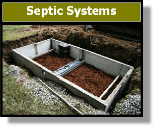 8002B Septic System Cleaner