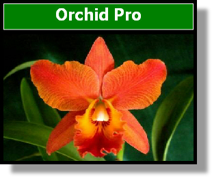 1003A Orchid Pro